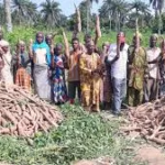 """""""How Rivers Farmers can stop COVID 19 Hunger"""""""